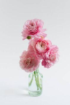 Spring Blooms, Glass Vase, Home Decor, Decoration Home, Room Decor, Home Interior Design, Home Decoration, Spring Colors, Interior Design