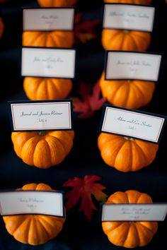 Reception table assignments - decorating a fall theme wedding with miniature pumpkins.