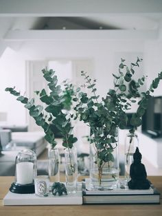 Eukalyptus-Weihnachtstische: 10 Ideen - Clem Around The Corner, Small Bouquet, Deco Floral, Deco Table, Home And Deco, Decoration Table, Vases Decor, Decorating With Glass Vases, Floral Arrangements, Table Arrangements