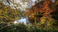 Resultado de imagen de naturaleza en otoño