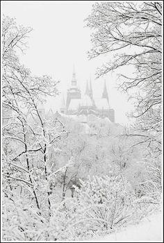 Prague castle in winter | http://www.iconhotel.eu/en/contact/location