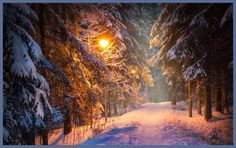 Einsamkeit ist der Weg, auf dem das Schicksal den Menschen zu sich selber führen will. Hermann Hesse — hier: Neverland.
