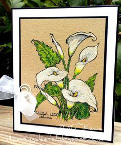 Kecia:  PSX K1696, Calla Lily Botanical; Coloursoft colored pencils