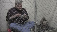 Touching video shows Dr Andy Mathis climb inside Graycie's kennel at an animal shelter in Georgia to join her for breakfast.