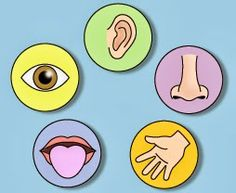 Smart Apps For Special Needs: Autism Discussion Page on Sensory Needs