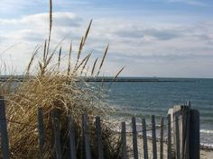 Cape Cod... I want to go back when I'm not sick and its not horribly hot and humid.