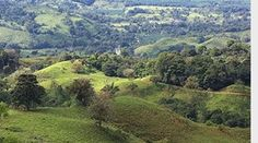 While I am in Costa Rica.. I am still in the beginning stages of securing a land partner for the Coravida Festival. I have had a few exciting potential's, but nothing has really come through yet.#business #coach #life #strategies http://jamesrick.com/