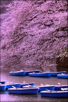 Marunouchi, Tokyo, Japan | Flickr - Photo Sharing!