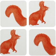 Thornback & Peel Squirrel Coasters - Set of 4 ($30) found on Polyvore
