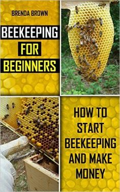 Beekeeping For Beginners: How To Start Beekeeping And Make Money   Kindle  Edition By Brenda