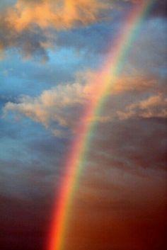 Rainbow in my backyard Rainbow Sky, Love Rainbow, Over The Rainbow, Rainbow Colors, Rainbow Promise, Rainbow Aesthetic, Sky Aesthetic, Aesthetic Clothes, Rainbow Wallpaper