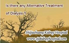 Is there any alternative treatment of dialysis ? In fact, this question is related to many kidney disease patients who are in the same situation. You know, dialysis is the most common way to relieve the symptoms of kidney failure, but long-terms of it will bring some side effects, so people are eager to find some alternative treatment of it.