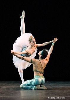 Marianela Nunez is my favorite ballerina. She has stunning artistry and impeccable technique.