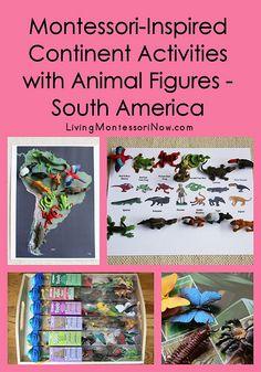 Montessori-Inspired South America Activities Using Safari Ltd. TOOBS