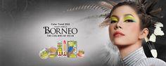 Trend Warna 2014 - Inspirasi Borneo