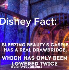 Disney fact, I wonder when it was lowered?<<<twice, on opening day and after fantasyland went under extreme renovations Disney Fanatic, Disney Nerd, Disney Addict, Punk Disney, Princess Disney, Disney Princesses, Disney Characters, Disney Dream, Disney Love
