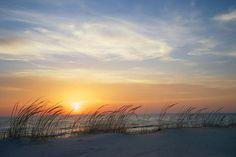 Lake Michigan Sunset With Dune Grass Photograph