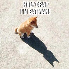 """I Should Have Known """"I'm A Batman"""".   LOL, Damn!--Funny Sayings"""