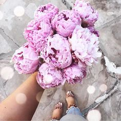 Yes please!😍 #peonies #summer #beauty Yes Please, Summer Beauty, Peonies, San Diego, Lashes, Boutique, Instagram, Eyelashes, Eyebrow