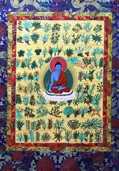 Medicine Buddha with healing herbs www.greennutrilabs.com