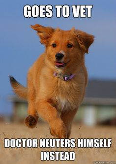 Spinoff of Ridiculously Photogenic Guy - too funny/cute!