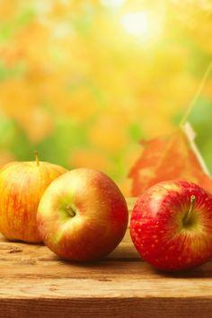640-Fall-Apples-l