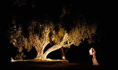 Torrance Color Wash Wedding Chandeliers by Pacific Event Lighting