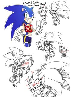 Female Sonic and Amy are cute together. Sonic and Amz Sonic The Hedgehog, Silver The Hedgehog, Shadow The Hedgehog, Shadow And Amy, Sonic And Shadow, Sonic Adventure, Amy Rose, Neko, Sonamy Comic