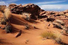 Australian+Desert | water that s the challenge in the desert the australian outback in ...