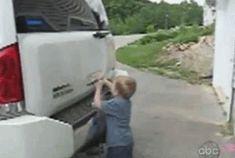 Fails de linces niños (parte 2)