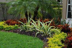 Tropical Landscape Color - tropical - Landscape - Miami - Pamela Crawford & Associates