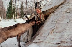 Elderly Nenets woman feeds bread to a tame reindeer at the entrance of her tent. © Bryan & Cherry Alexander Photography world cultures We Are The World, People Around The World, Wonders Of The World, Potnia Theron, Siberia Russia, First Nations, World Cultures, Belle Photo, Beautiful World