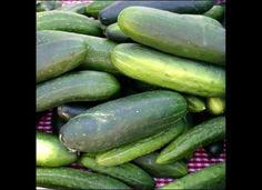 Cucumbers Are Sweeter When Planted Near Sunflowers