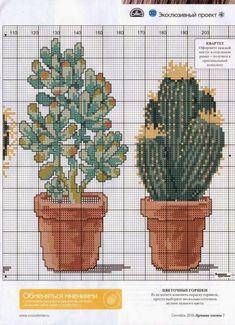 Cactus Cross Stitch, Cross Stitch Love, Cross Stitch Flowers, Cross Stitch Charts, Cross Stitch Designs, Cross Stitch Patterns, Cactus Embroidery, Embroidery Patterns, Cross Stitching