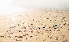 sunshine, sand and shellfish Sea Salt, Sunlight, Travelling, Sunshine, Nikko, Nikko