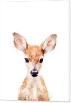 Fawn Canvas Print featuring the painting Little Deer by Amy Hamilton