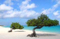 9. - Eagle Beach, Aruba Island