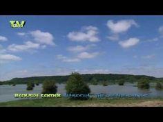 Nature Notes: De Blauwe Kamer - Overstroming - YouTube