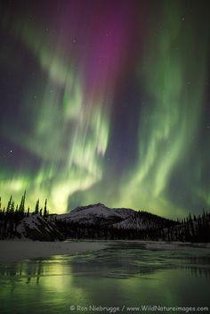 Nutirwik Creek, Brooks Range, Alaska. byRON NIEBRUGGE