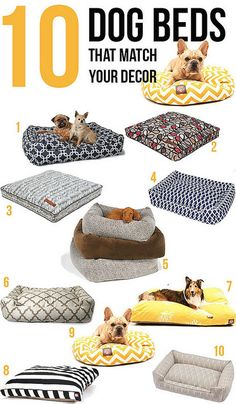 10 Stylish Dog Beds that Match your Decor by Home Coming, via Flickr