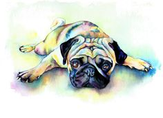 Pug Laying Flat Painting by Christy Freeman - Pug Laying Flat Fine Art Prints and Posters for Sale