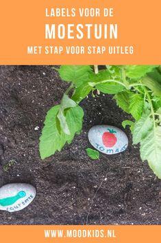 moestuin plantenlabels van steen zelf maken met uitleg Gardening, Outdoor, Mood, Kids, Outdoors, Lawn And Garden, Outdoor Games, The Great Outdoors, Horticulture