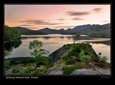 Killarney National Park, Ireland. Trip booked.
