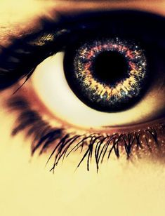 wow! I love eye photography I want to do something like this!