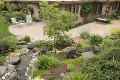 More project photos. Please see us at classicnursery.com for more info - contemporary - landscape - seattle - Classic Nursery & Landscape Co. / Alan Burke, asla
