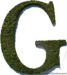 Moss+covered+12+Inch+Letter+Initial+Monogram+G+by+SpottedLeopard,+$39.95