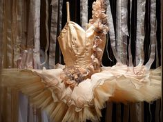 lovely tutu from Repetto's in Paris