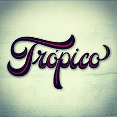 tropical fonts - Google Search