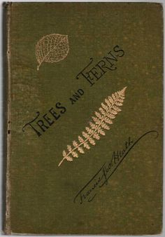Trees and Ferns, Francis George Heath 1879