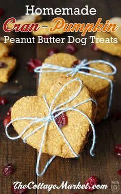 Cran-Pumpkin Peanut Butter Oatmeal Homemade Dog Treats and a little CRAFTY DIY Great for a DOGGIE PARTY!!!!